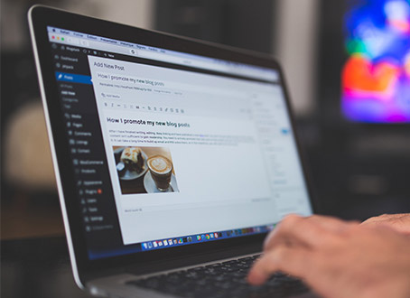 Updates mit WordPress-Profi aus Freiburg